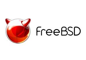 FreeBSD 9.1 в KVM